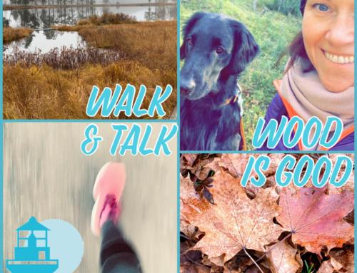 Wood is good, om walk & talk-möten med skogsbad